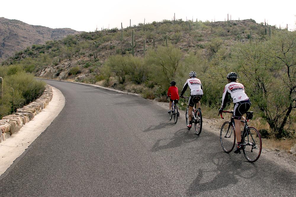 Saguaro East